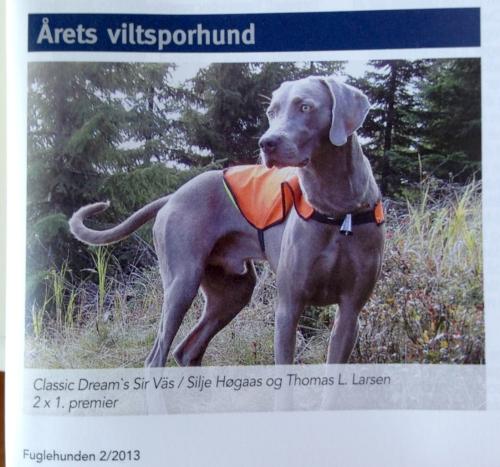 Årets viltsporhund 2012