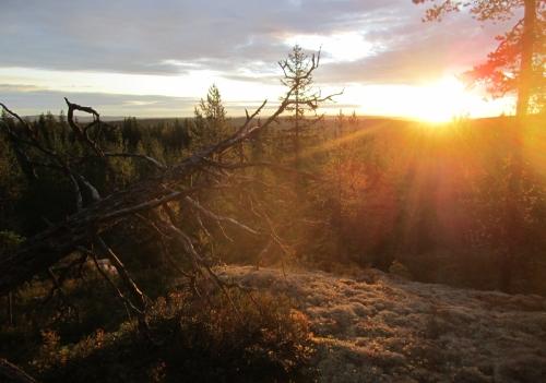 Finnskogen_jakt