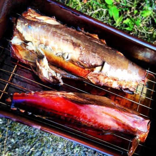 Røkt makrell